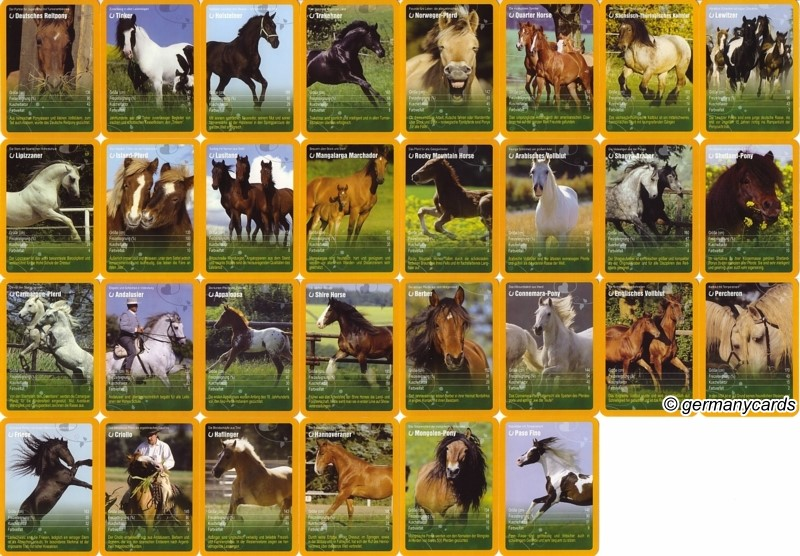 pferde kartenspiel