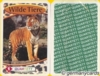 (M) Top Trumps *Berliner 1999* Wilde Tiere