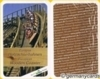 (M) Top Trumps *parkscout* European Wooden Coaster